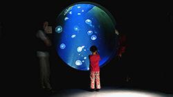 Греческий аквариум. Фото: flickr.com/aquario