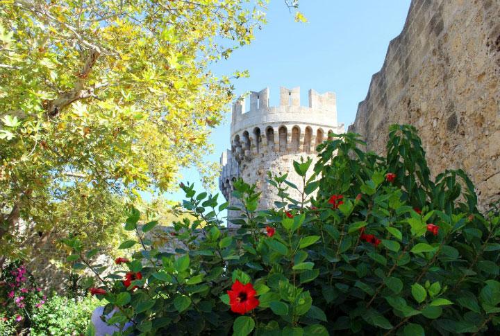 Цветы у крепостной стены.