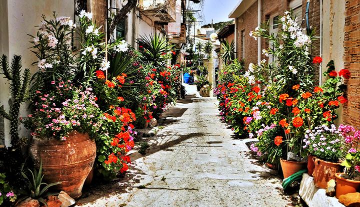 Цветочная улица.